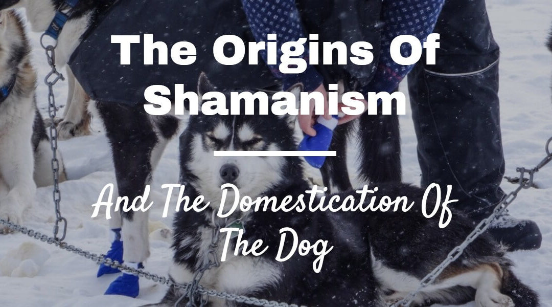 Woven Energy 10 – Shamanism, Evolution and the Domestication of the dog