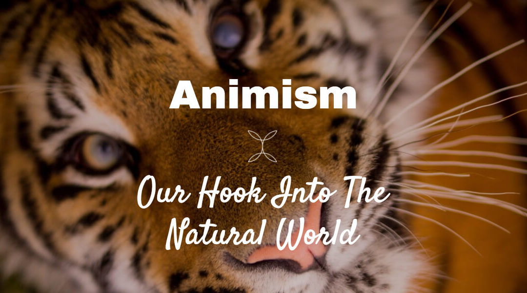 Woven Energy 11 – Animism… our hook into the natural world